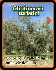 Buon_olio_peligno_le-vie-dell'Olio